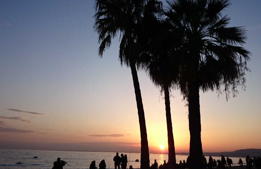palmiers-nice-promenade-des-anglais