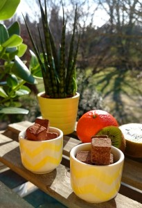 chocolat-cru-rrraw-ambience-fruits